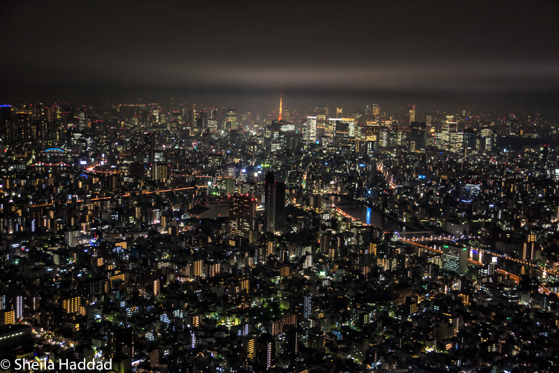 Night View from Sky Tree Tower with Tokyo Tower in background